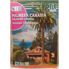Rocalba - Palmera Canaria Semillas Samen der Kanarischen Dattelpalme Phoenix canariensis 10g - LAGERWARE