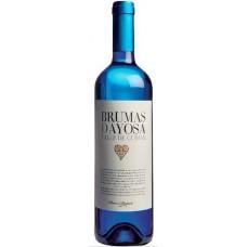 Brumas de Ayosa - Vino Blanco Afrutado Weißwein fruchtig 11% Vol. 750ml hergestellt auf Teneriffa - LAGERWARE